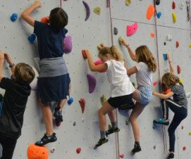 Un nouveau mur d'escalade au gymnase des Cent-Gardes